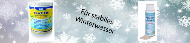 Fit für den Winter